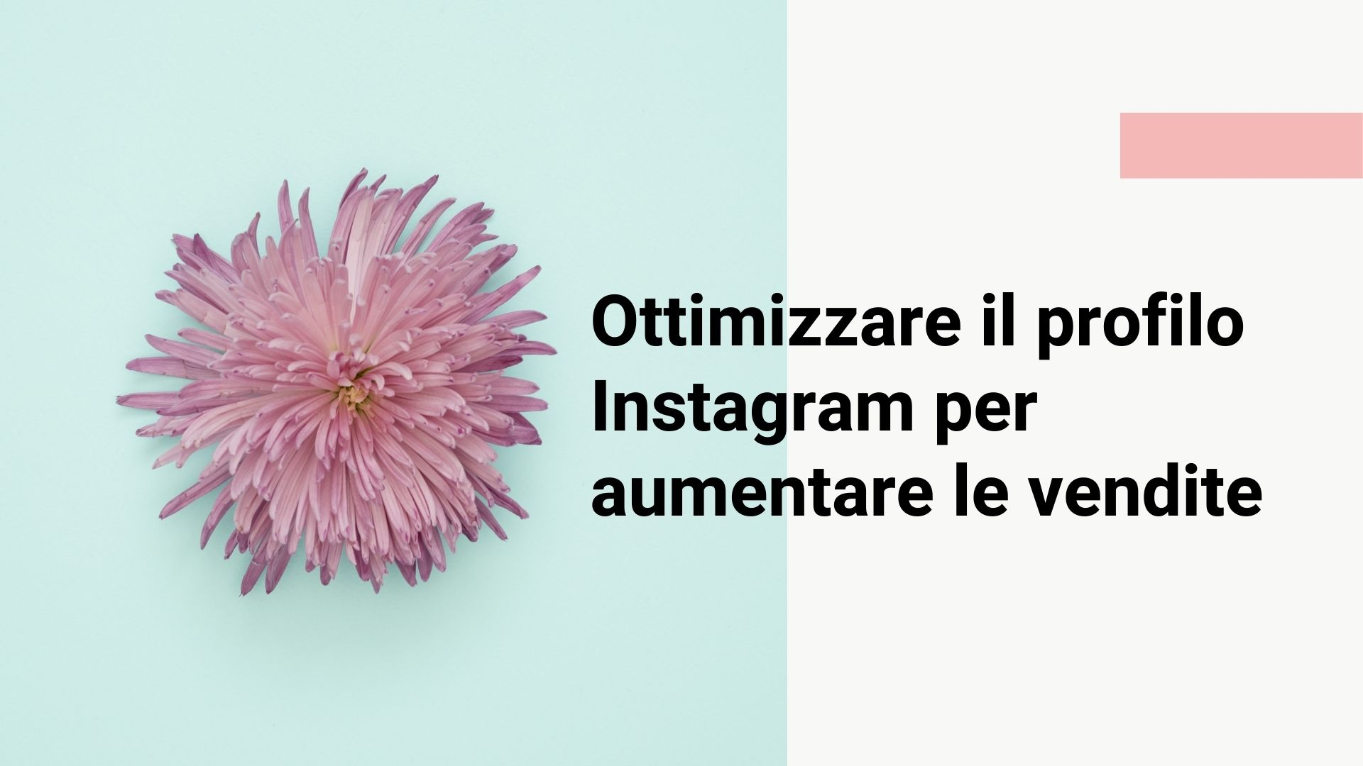 ottimizzare profilo instagram